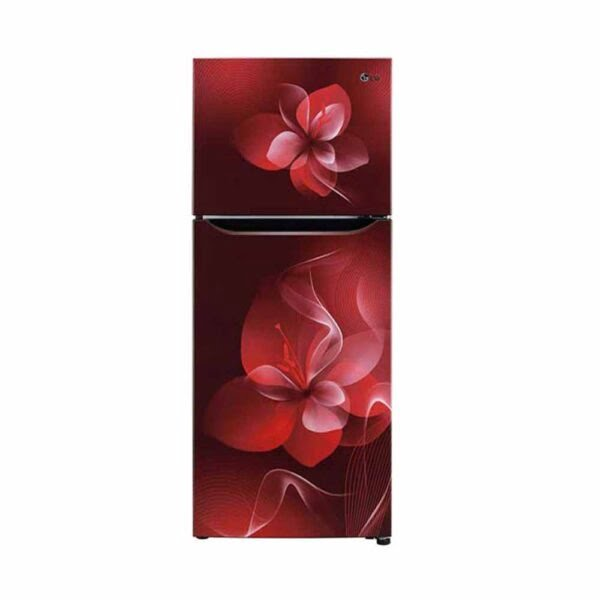 LG Inverter Refrigerator 260L - Scarlet Dazel